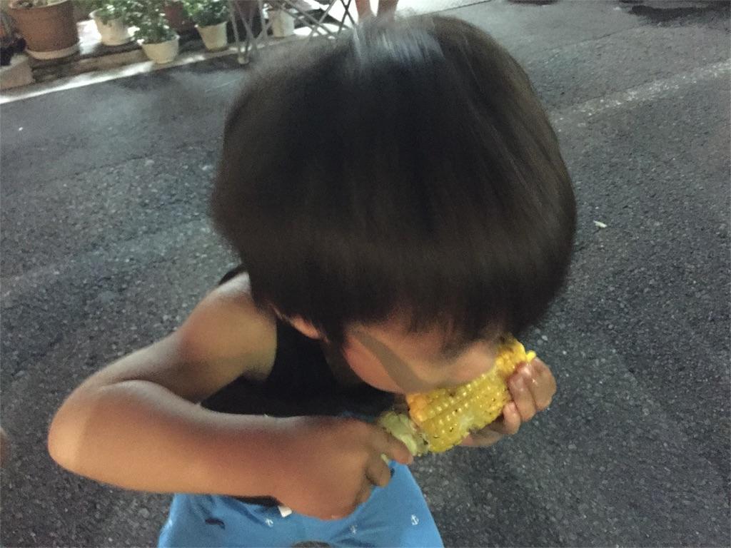 f:id:sayurice:20160820220653j:image