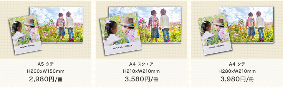 f:id:sayurice:20160824231248p:plain