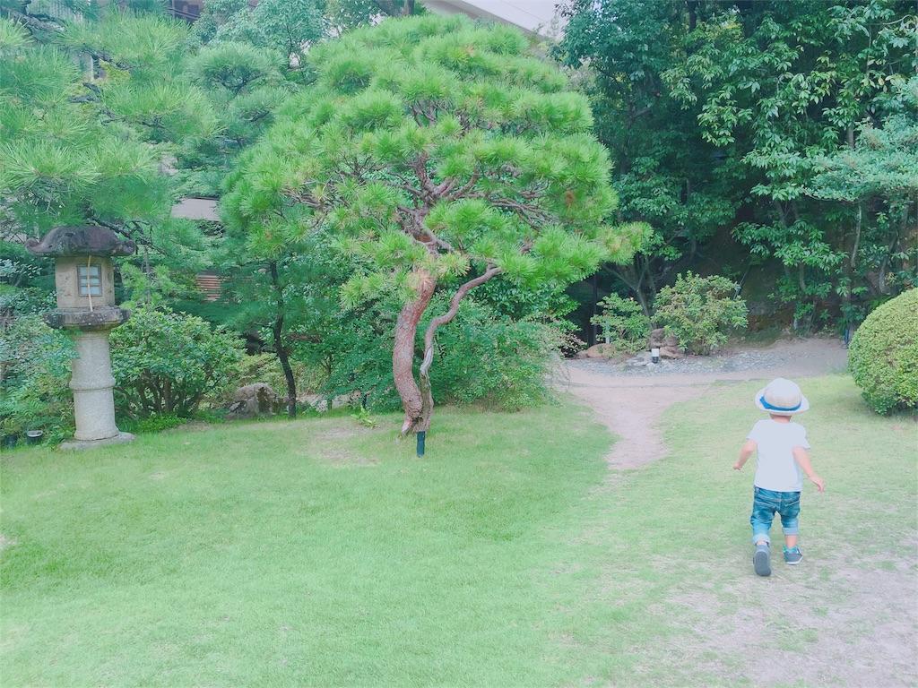 f:id:sayurice:20160911221302j:image