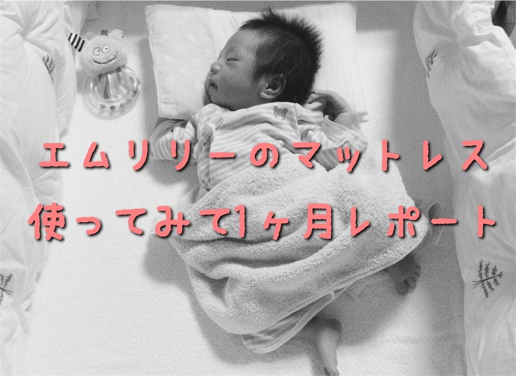 f:id:sayurice:20170306120445j:image