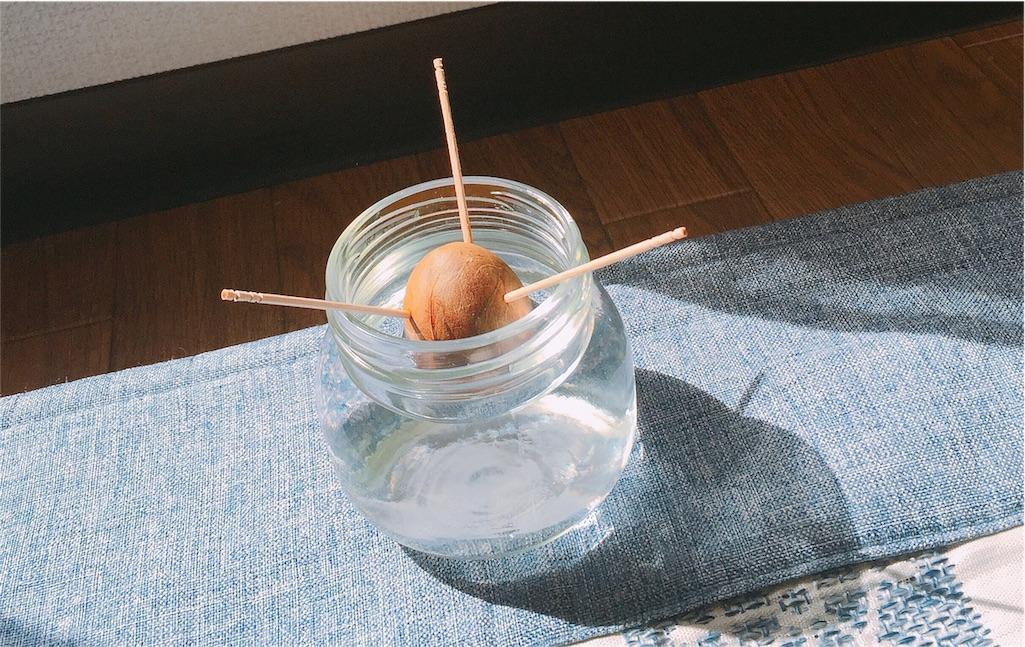 f:id:sayurice:20170308001303j:image