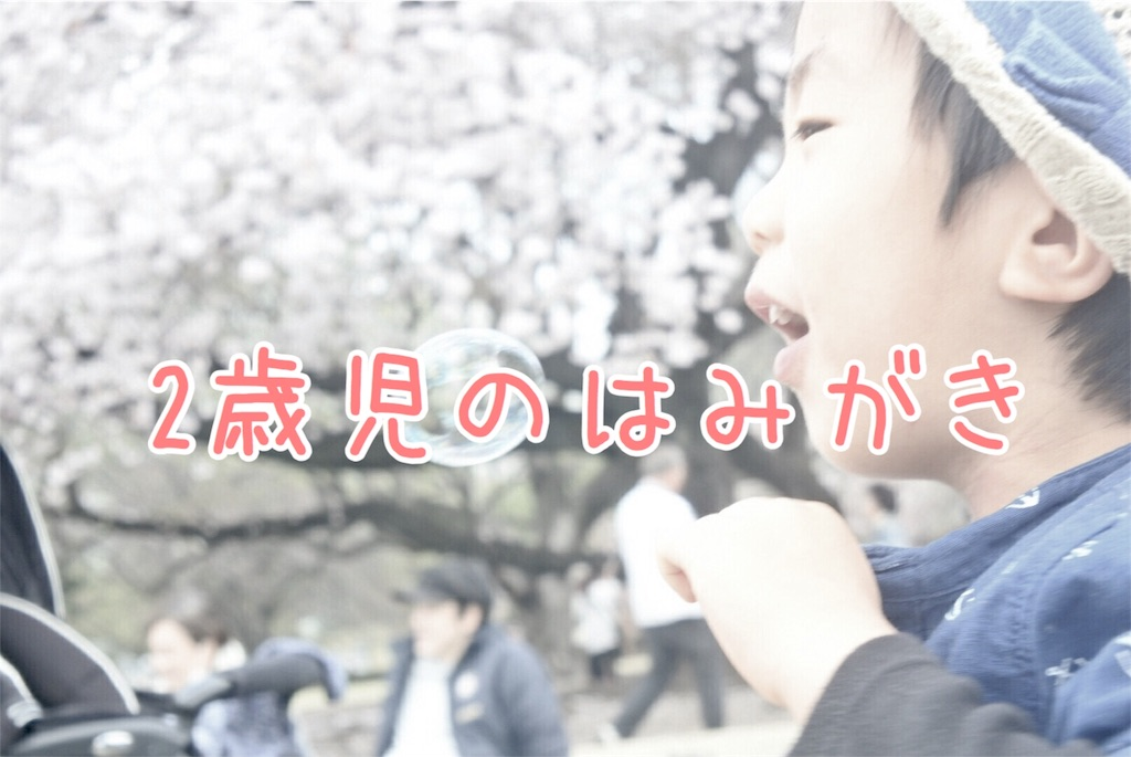 f:id:sayurice:20170413235431j:image