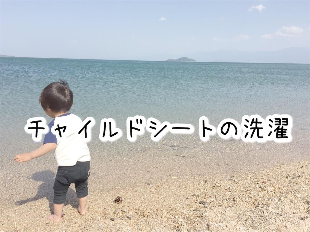 f:id:sayurice:20170603140145j:image