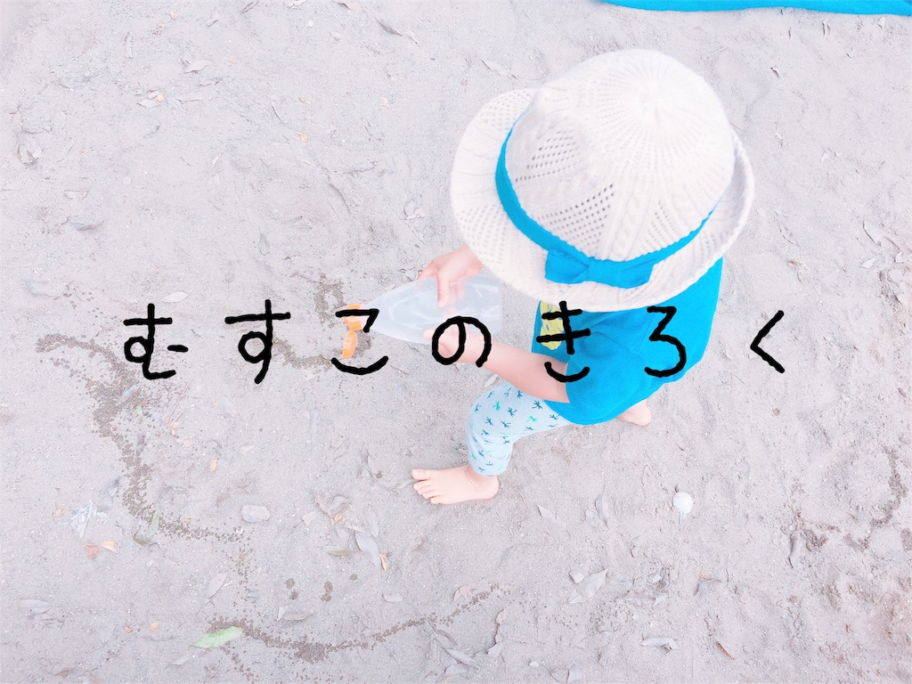 f:id:sayurice:20170616230037j:image