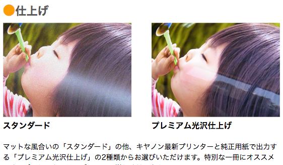 f:id:sayurice:20170630131055p:plain