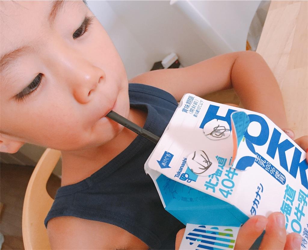 f:id:sayurice:20170809152907j:image