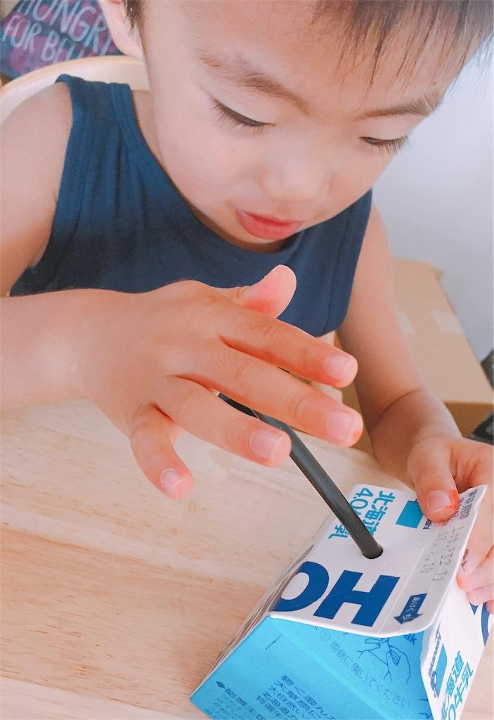 f:id:sayurice:20170809152941j:image