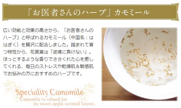 f:id:sayurice:20170910004717p:plain