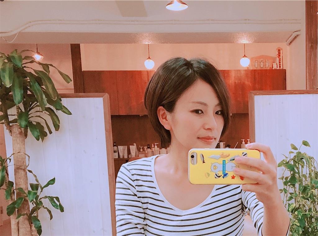 f:id:sayurice:20171021211619j:image
