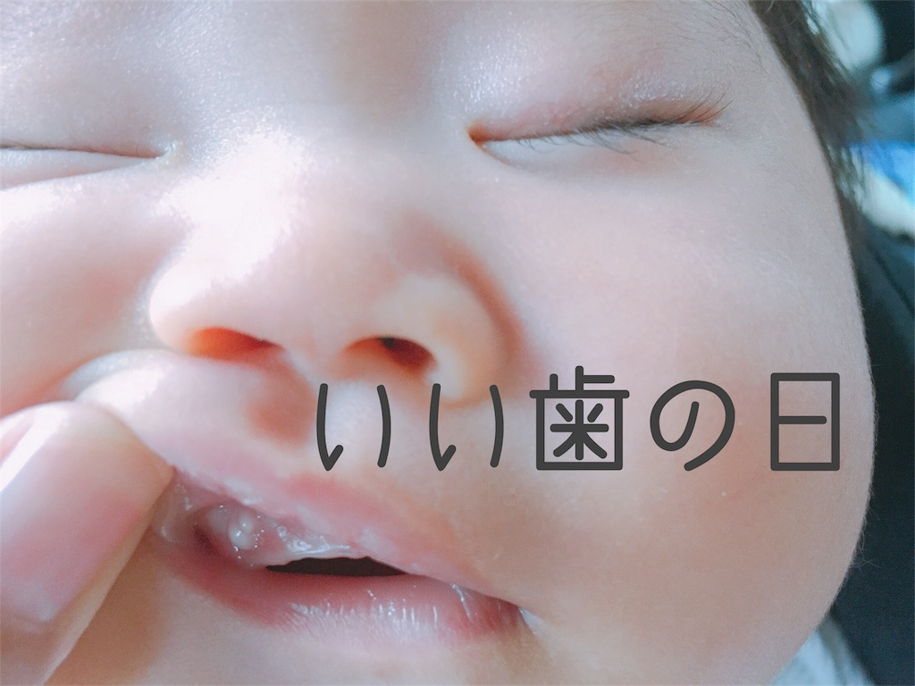 f:id:sayurice:20171108164250j:image