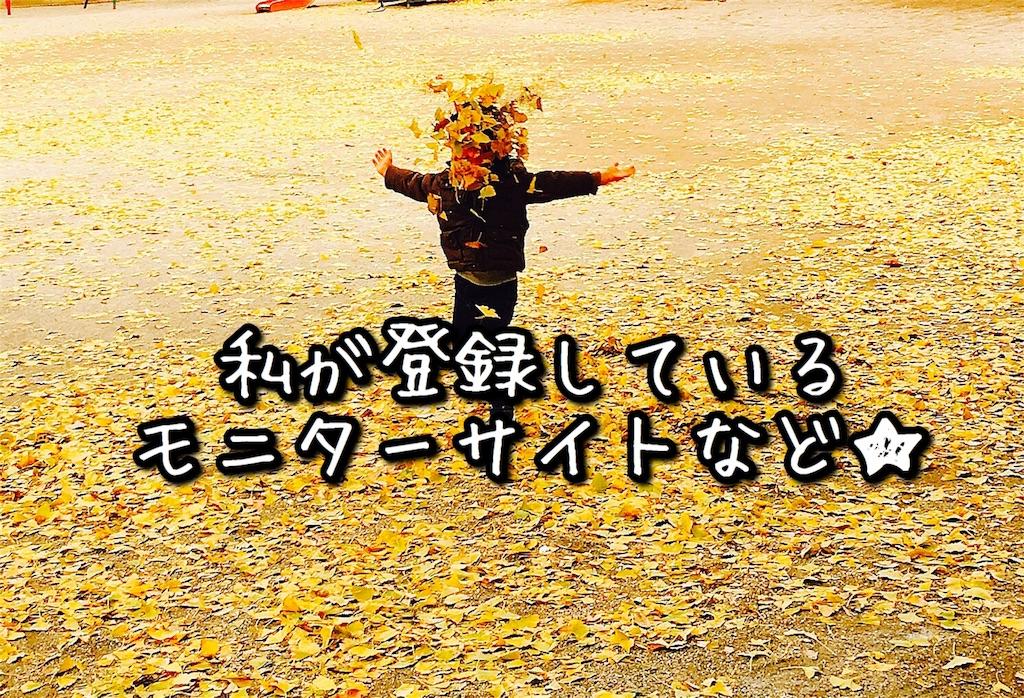 f:id:sayurice:20171203151502j:image