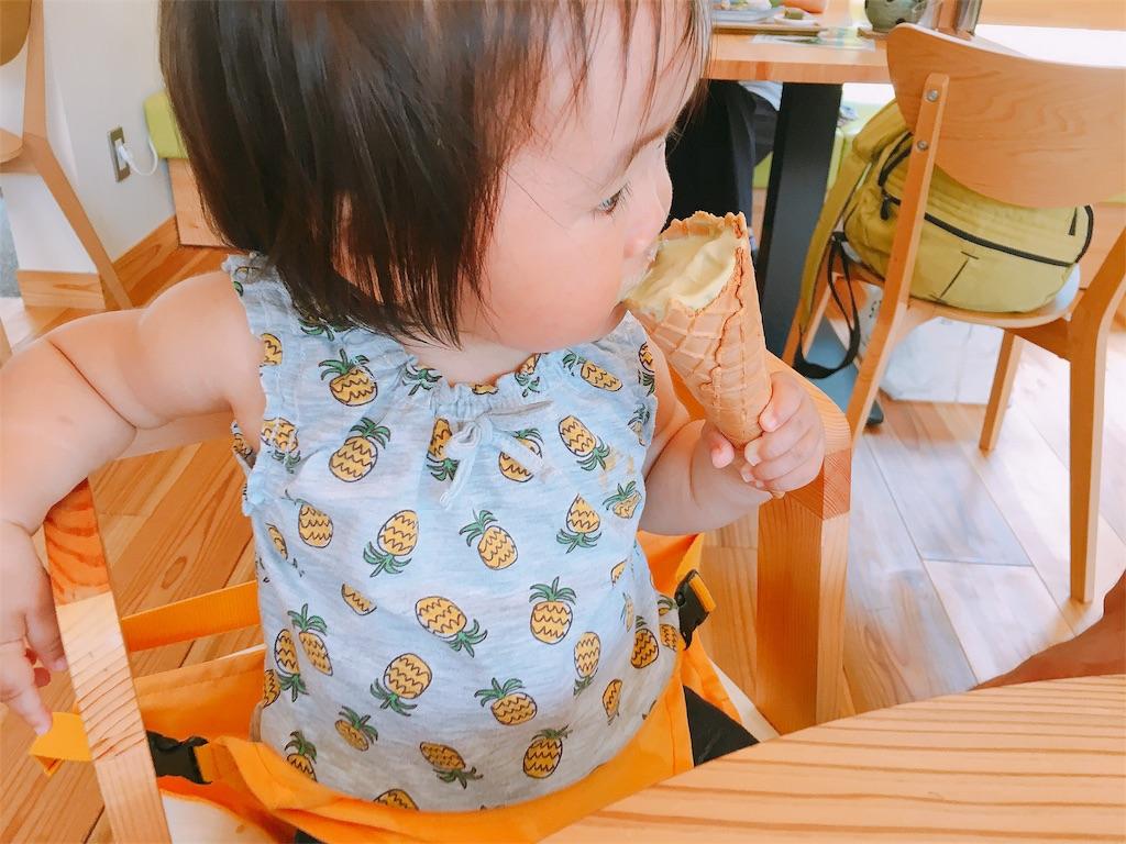 f:id:sayurice:20180804144533j:image