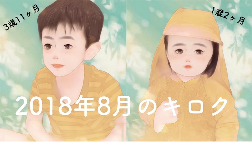 f:id:sayurice:20180906020435j:image
