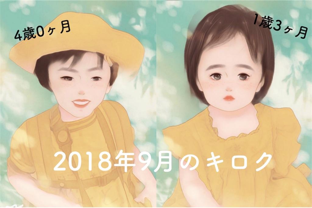 f:id:sayurice:20180930105336j:image