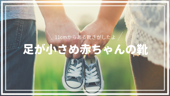 f:id:sayurice:20181110014043p:plain