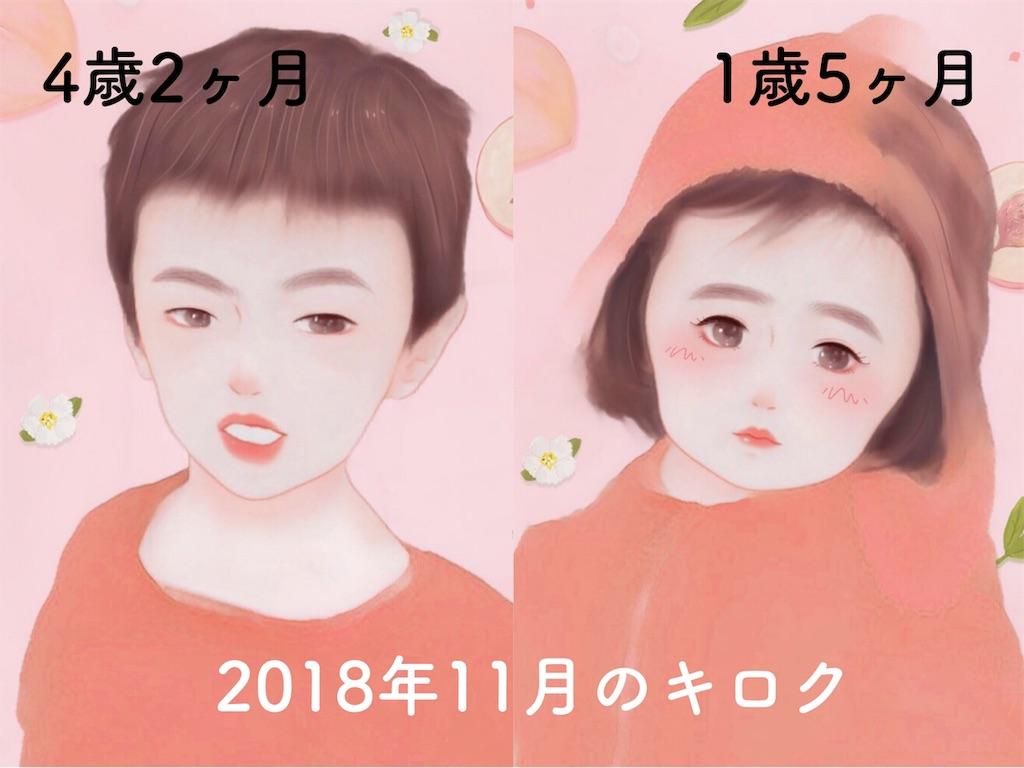 f:id:sayurice:20181207152144j:image