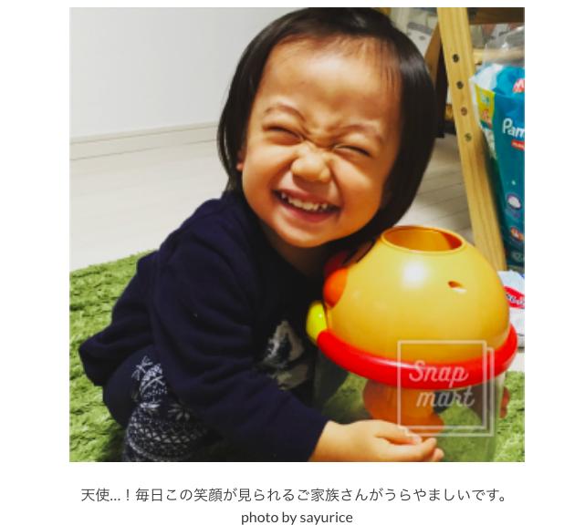 f:id:sayurice:20181213214027p:plain