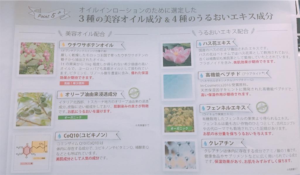f:id:sayurice:20181216225119j:image