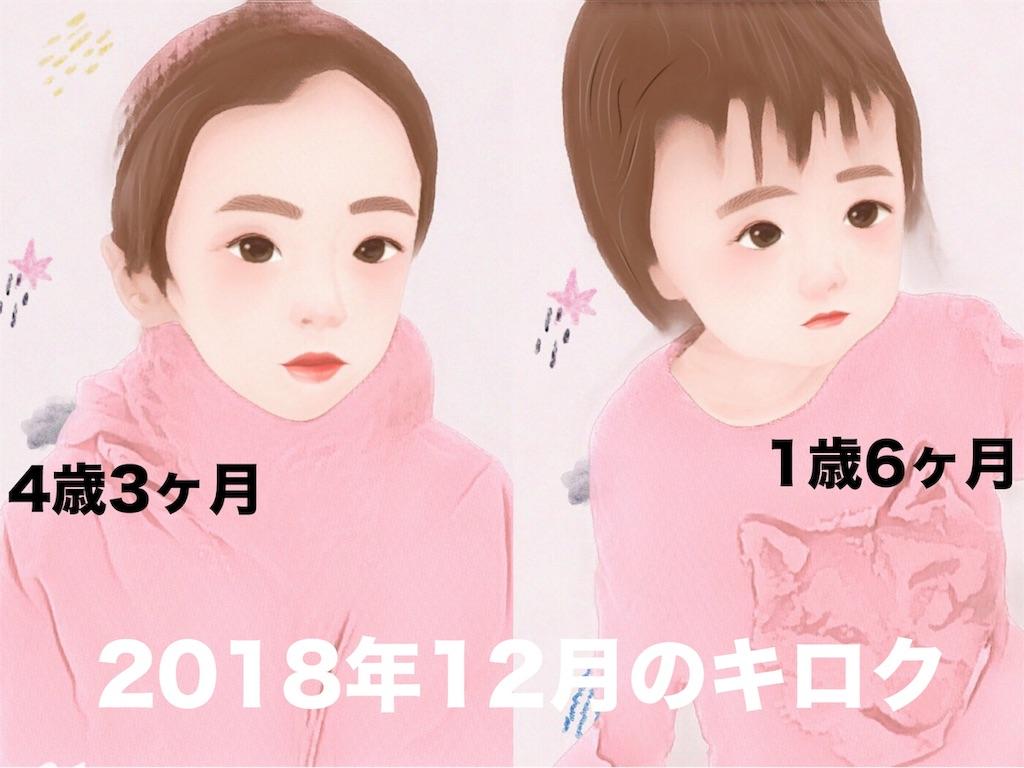 f:id:sayurice:20181231112840j:image