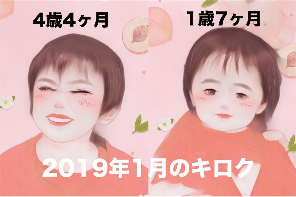 f:id:sayurice:20190208222845j:image