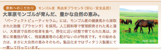 f:id:sayurice:20190305135514p:plain