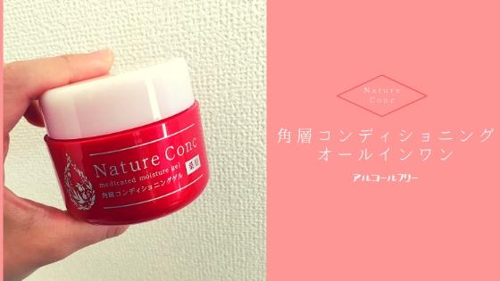 f:id:sayurice:20190415135754j:plain