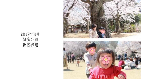 f:id:sayurice:20190430132047j:plain