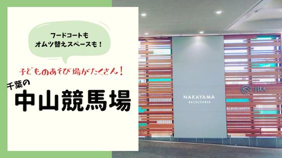 f:id:sayurice:20190505214402j:plain