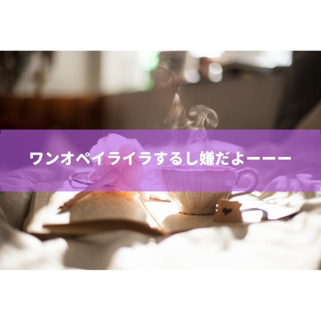f:id:sayutan14:20181223202845j:plain