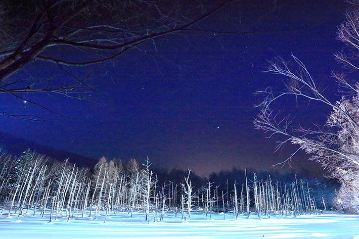 """""""青い池""""は冬こそが美しい☆ ライトアップで広がるブルー×ホワイトの幻想的世界"""