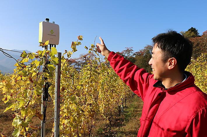 長野県で極上のワイン作りをお手伝いしている「e-kakashi」を訪ねてきた!