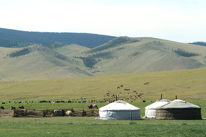 「モンゴル 画像」の画像検索結果