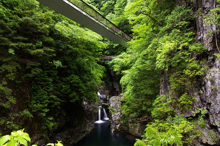 夏休みにオススメの涼スポット!奈良県 大峰山周辺エリアでつながるネットワーク