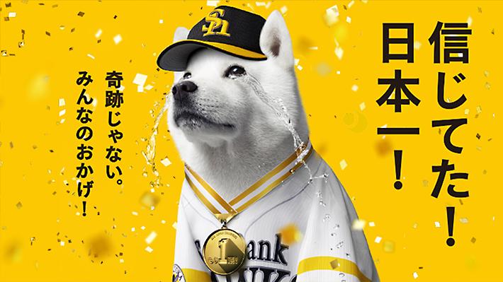 今年もやります、日本一キャンペーン!