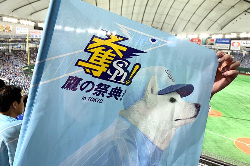 鷹の祭典2019 in 東京ドームレポート! プロ野球の素朴なギモンもちょっとだけ解説します