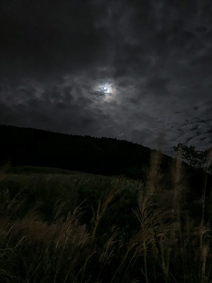 月 撮影 スマホ