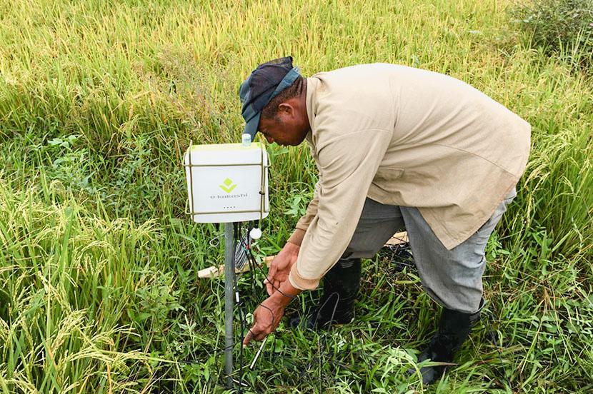 データ農業は世界の食糧問題を救う?「e-kakashi」が挑戦する21世紀型の科学農業とは