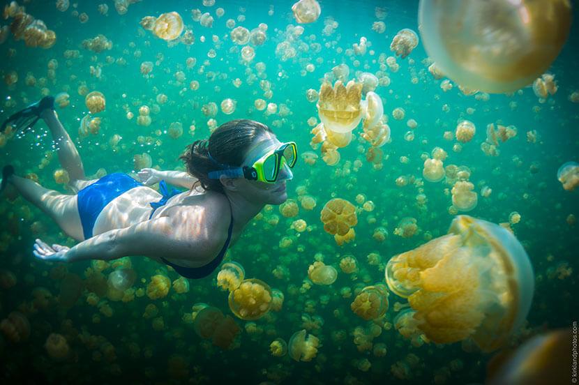 美しすぎるエメラルドグリーンの海と大自然の楽園「パラオ」