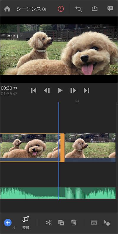 スマホ動画編集のプロに聞く、愛犬や愛猫などペット動画編集のコツ。今日からあなたも動画クリエイター!
