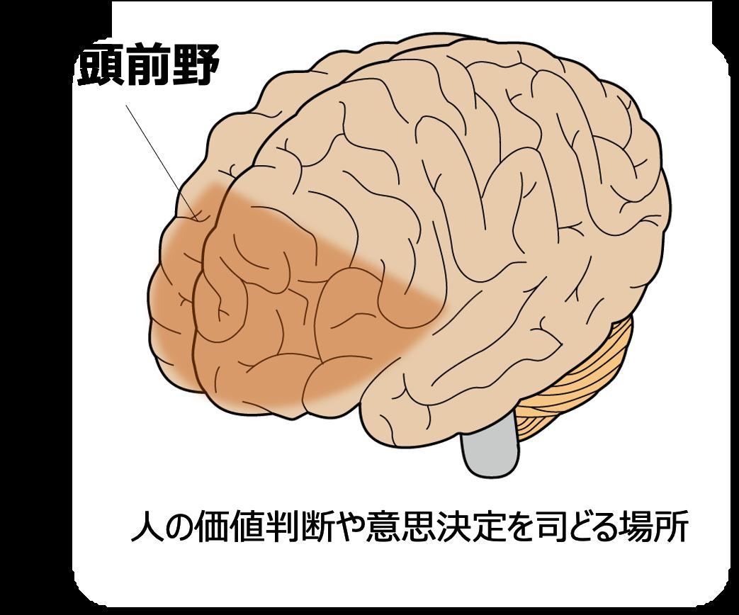 脳科学者に聞いた、スマホとのベストディスタンス。脳過労の症状と対策とは?
