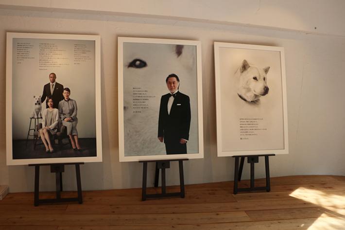 北大路欣也さんや白戸家で共演していた、上戸彩さん、ダンテ・カーヴァーさん、樋口可南子さんからコメントが寄せられていました。