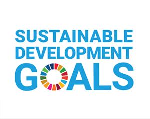 SDGs(エスディージーズ)とは? 17の目標と達成すべき理由を解説(3分で分かるSDGs)