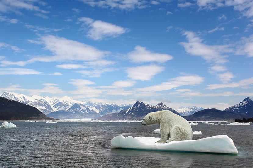 SDGsの目標13「気候変動に具体的な対策を」。地球の未来を守るために(3分で分かるSDGs)