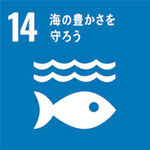 SDGsの目標14「海の豊かさを守ろう」。小さな一歩が未来の海を救う(3分で分かるSDGs)