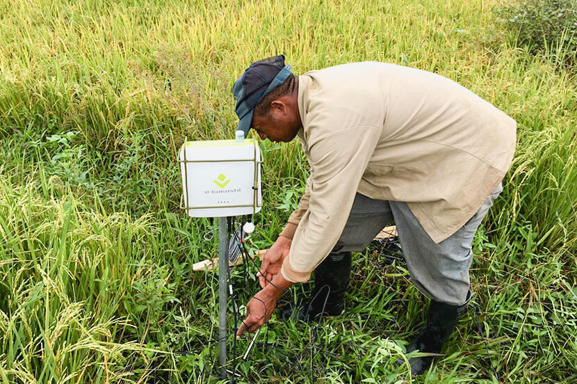 How SoftBank is Using Data-driven Agriculture to Solve the Global Food Problem