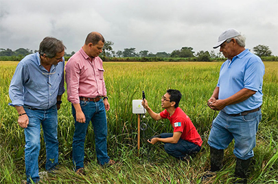 CIAT researchers with local personnel   How SoftBank is Using Data-driven Agriculture to Solve the Global Food Problem