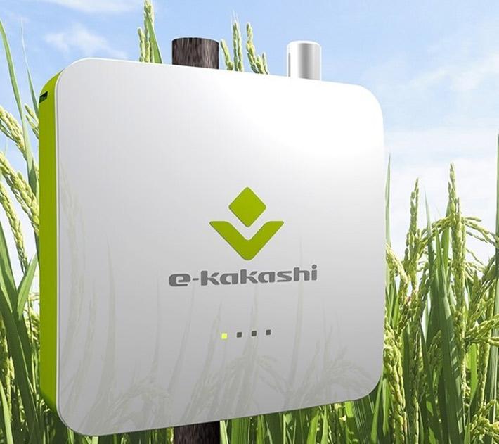 森林・芝生による効率的なCO2吸収活動を、「e-kakashi」がサポート