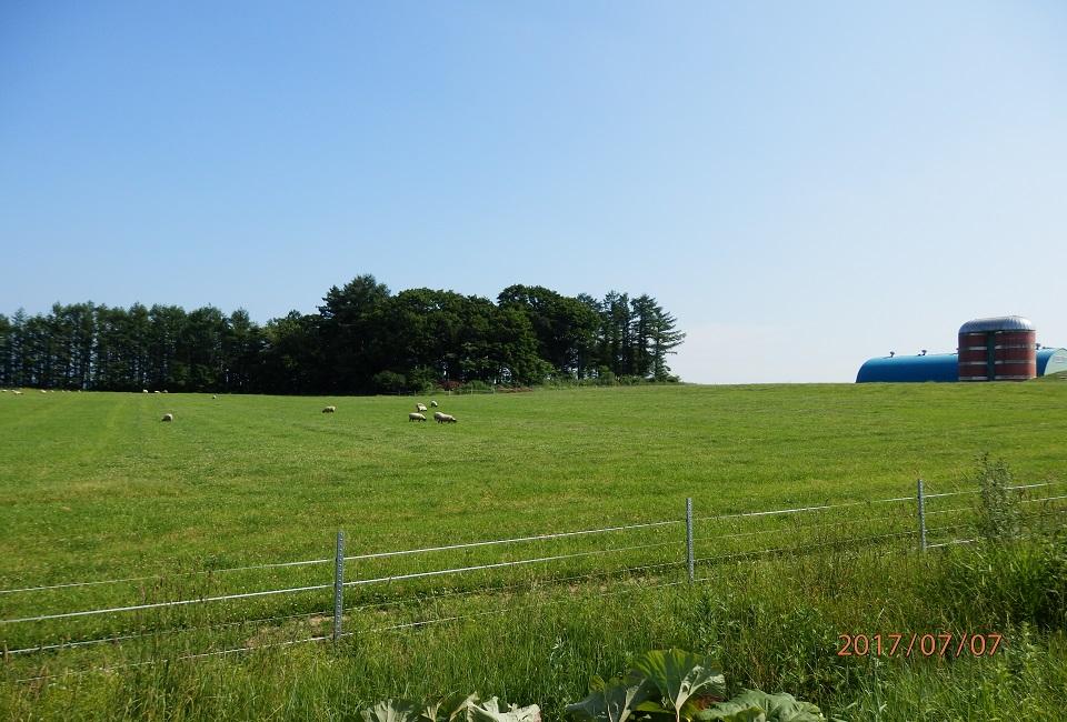北海道の牧場の画像