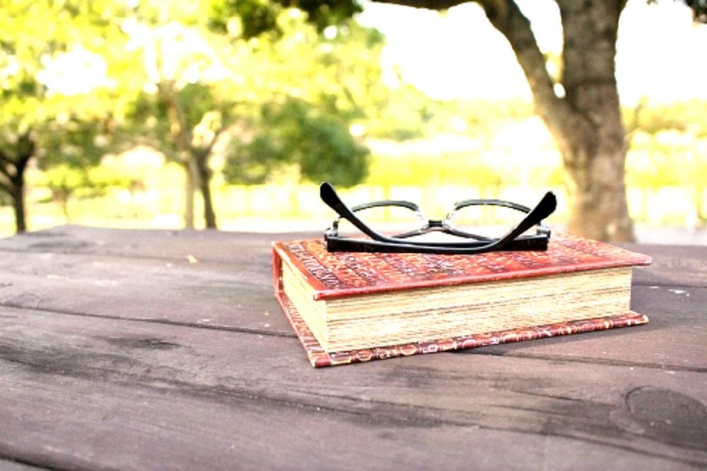 公園のテーブルの上の本とメガネの画像