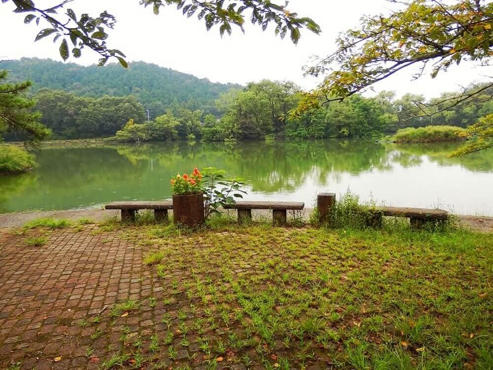 グリーンパーク山東の三島池湖畔の風景とベンチ